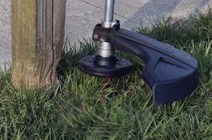 Fence Post Protection