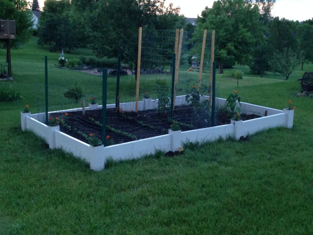 Vegetable Garden Bed Layout